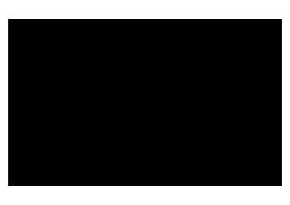 logo_section2